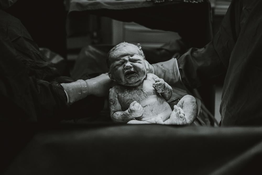 Amelia Birth (84)